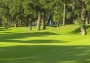 Hôtel Lodge golf & Spa 4* - Landes (40).